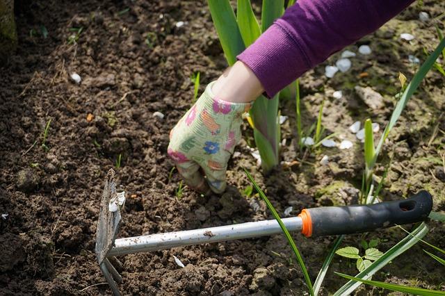 Jar klope na dvere. Najvyšší čas pripraviť záhradku na jarné sadenie